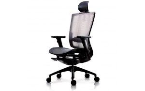 Ортопедическое компьютерное кресло DuoFlex BR-200M