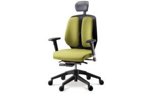 Ортопедическое компьютерное кресло Duorest Alpha 50H(E)